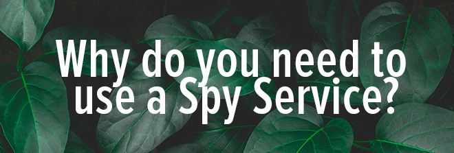 Why do you need to use an Ad Spy Service?